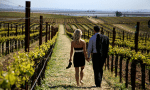 Wine Country Elopements